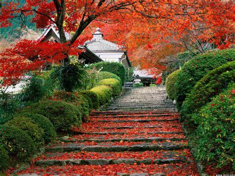 japanese garden awesome natural japanese garden