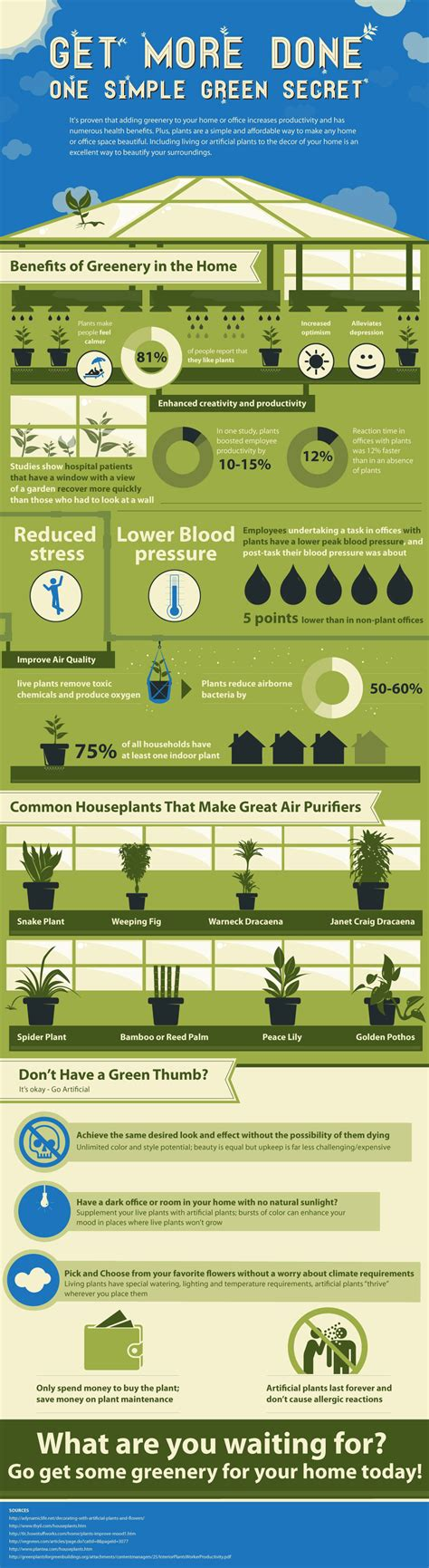 benefits of houseplants infographic the benefits of keeping a plant designtaxi com