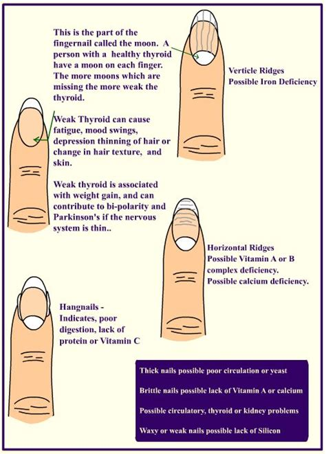 Speaking Of Healthy Nails by 25 Best Ideas About Fingernail Health On