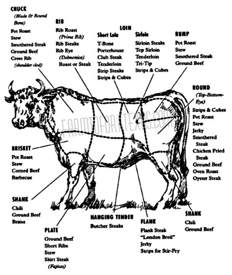 diagram of steak cuts beef cuts diagram farm to fork