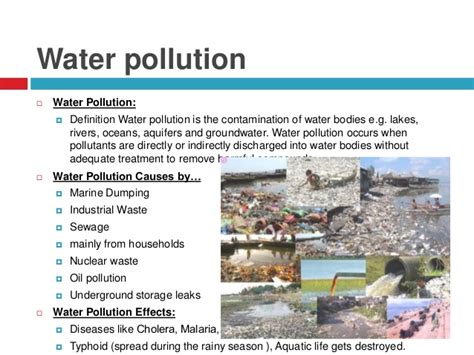 Causes And Effect Of Water Pollution Essay by Causes And Effects Of Pollution Essay