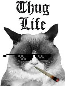 Wall Removable Sticker For Kids quot thug life cat quot stickers by headout redbubble