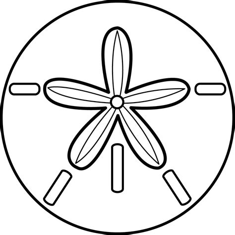 and clipart best sand dollar clip 8012 clipartion