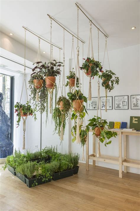 Window Plant Hanger - 25 best ideas about indoor hanging planters on