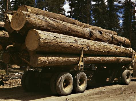 how lod file truck load of ponderosa pine edward hines lumber co