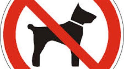 divieto ingresso cani niente concerto al parco perch 233 con il mio credo