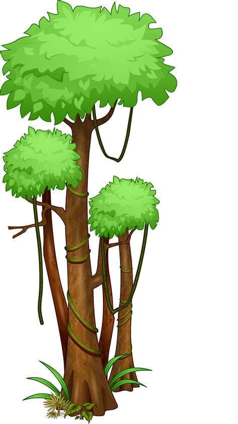 rainforest tree template woozworld news rainforest and lost template of the