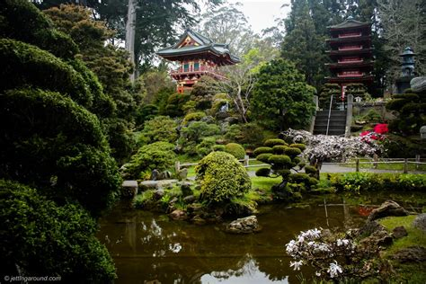 Garden Sf by Japanese Tea Garden S Reviews