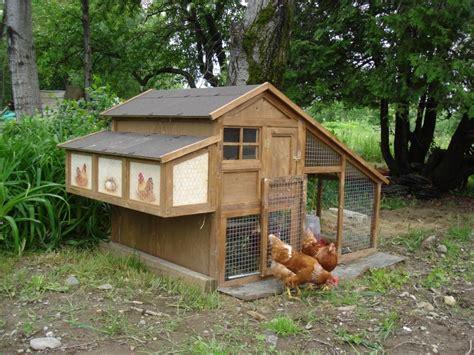 abri cuisine cing occasion poulailler pour 3 poules vendre poulailler