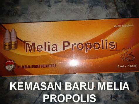 Propolis Grosir Propolis Ippho Asli Murah Agen Propolis grosir propolis melia grosir herbal propolis melia grosir propolis melia murah grosir