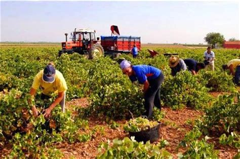imagenes satelitales para agricultura integrantes de ganader 205 a agricultura y pesca de diputados