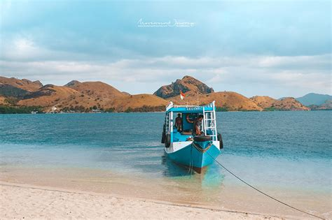 boat trip around komodo island one day trip to komodo island พาไปด ม งกรโคโมโด