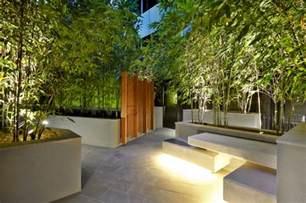 terrasse bambus bambus im k 252 bel als sichtschutz und deko auf der terrasse