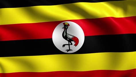 flags of the world uganda uganda flag stock footage video shutterstock
