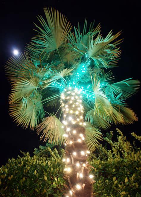 point loma christmas lights christmas light installers fairbanks ranch d tek