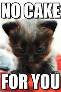 No Cake Meme - no cake for you meme image picsmine