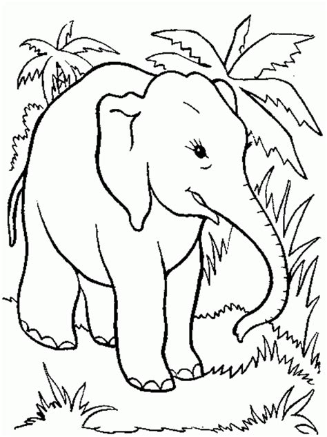 kids page elephant coloring pages printable elephant