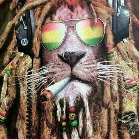 imagenes de leones rastafari imagen de leon rasta imagui