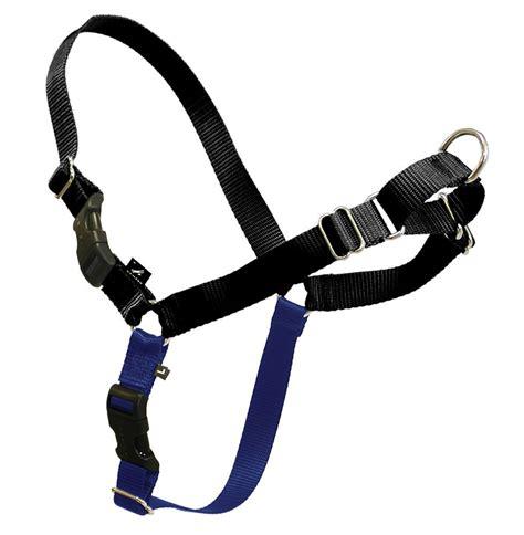 walking harness 5 best no pull harness make your walks more enjoyable tool box