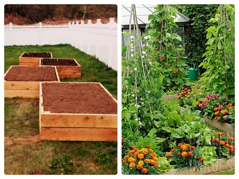 advantages of raised garden beds raised bed gardening the advantages and disadvantages