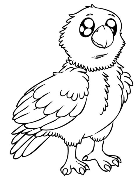 eaglet coloring page baby eagle coloring pages kids coloring pages