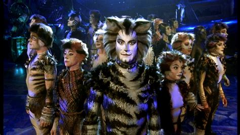 cats musical noooo the broadway musical cats is becoming a