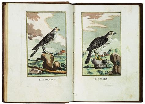george cornici buffon georges louis ornitologia portatile asta libri