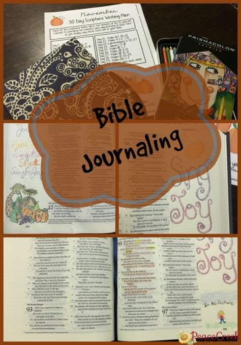 Bible Giveaway - giveaway archives peacecreekontheprairie com