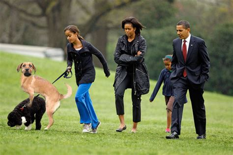 dog for house guard updated another incriminating photo the truth about dogs against romney revealed