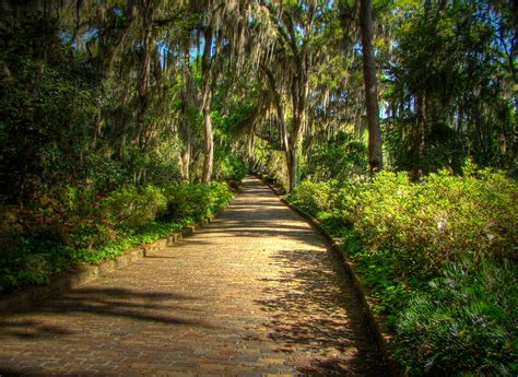 park tallahassee mcclay gardens state park tallahassee florida wallpaper allwallpaper in 15786 pc en