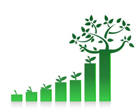 Design Management Grow | building a strategy for sustainable growth taiga company