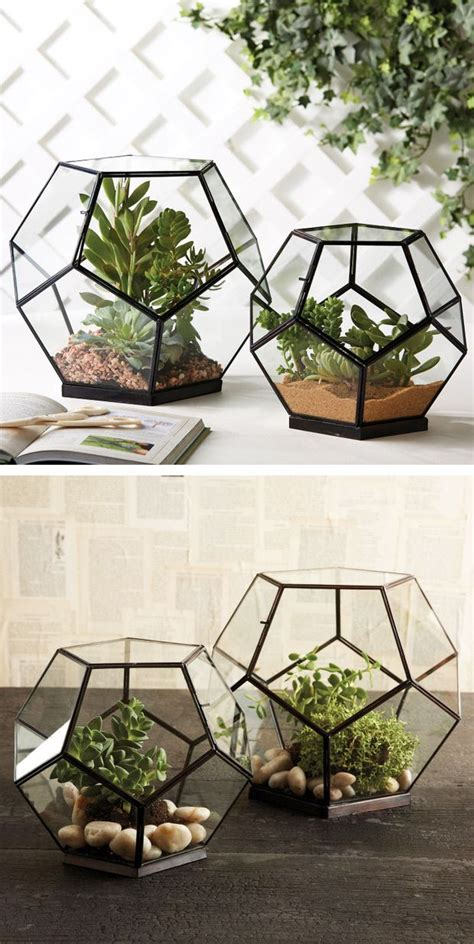 geodesic planters  images indoor greenhouse venue