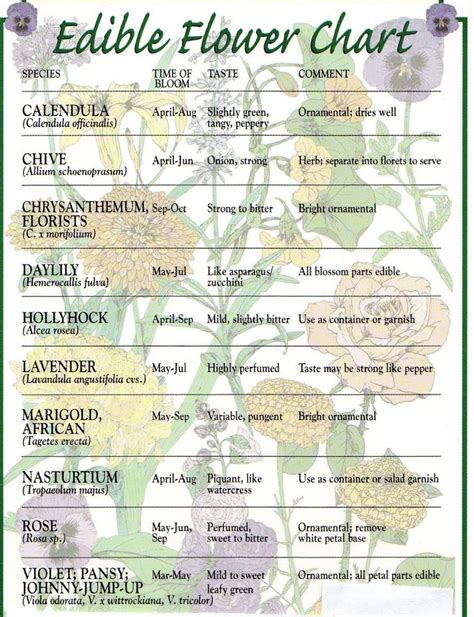 printable list of edible flowers 17 best images about garden charts printables on