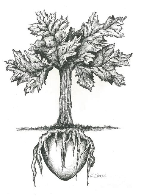 Tote Bag Tipografi Simple roots of the drawing by sirard