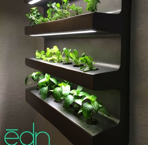 wall hanging edn grows number of different vegetables and