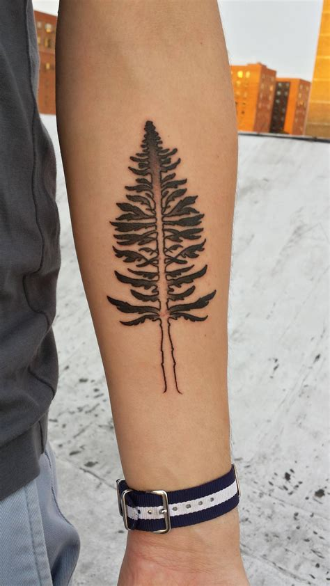 fir tree tattoo new cascadia inspired of thrones douglas fir sigil