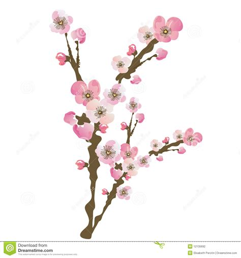 Blossom Free blossom clipart clipart suggest