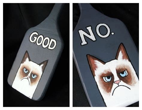 Bdsm Meme - grumpy cat inspired bdsm paddle basia rose