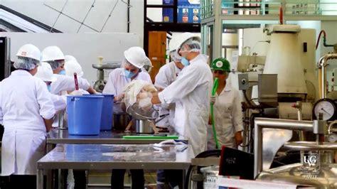 ingenieria laboratorios ciencias de alimentos youtube