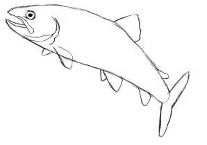 How To Draw Fish How To Draw Fish Breeds Picture