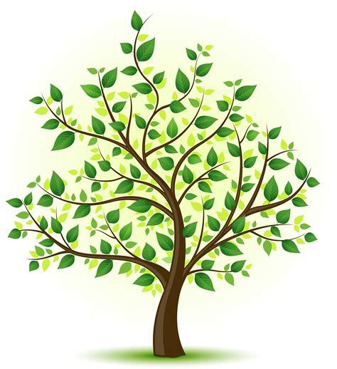 environmentally friendly trees the gallery for gt family tree drawing genealogy family tree tree