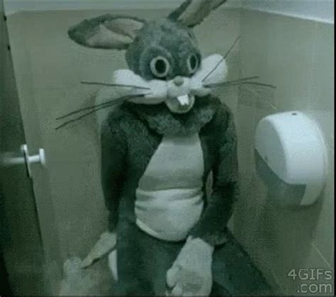 bunny bathroom gif take a seat gif takeaseat come bugsbunny discover