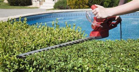 cura giardino cura giardino 7 consigli per prepararsi all estate