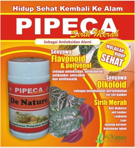 De Nature Kapsul Sirih Merah Pipeca Obat Herbal Asli atasi dengan yang aman merapatkan yang longgar