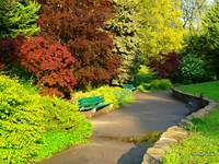 Beautiful Spring Scenery Of A Park/garden Green