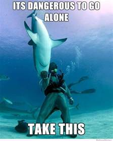 Shark Attack Meme - its dangerous to go alone take this funny