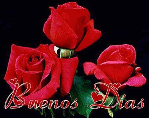 imagenes de feliz sabado con rosas rojas que sean buenos dias como las rosas tnrelaciones