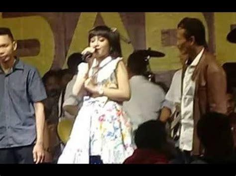 despacito jihan audy jihan audy despacito new versi rosabella the music