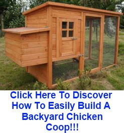 Backyard Chicken Coops Plans by Just Coop Coop Designs Backyard Chicken