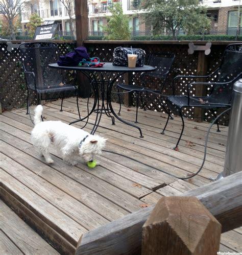Pooch Patio the pooch patio in dallas tx prestonspeaks